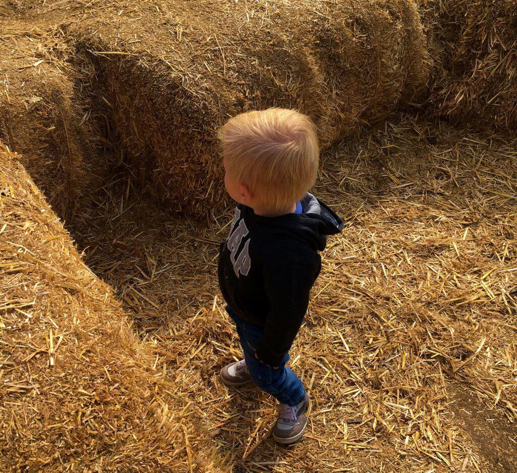 Happy Mum Blog - Ausflug zur Jucker Farm - Strohballen
