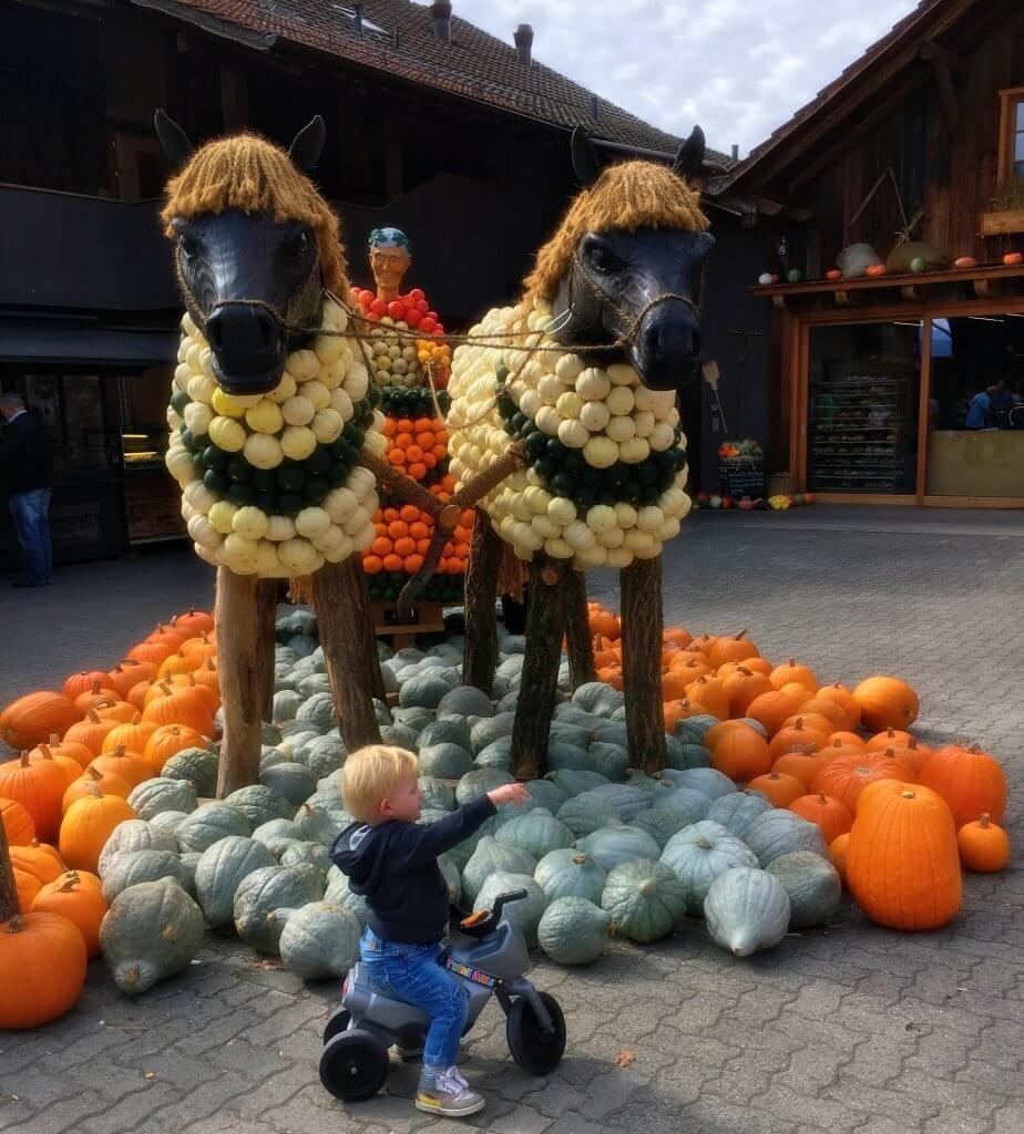 Happy Mum Blog - Ausflug zur Jucker Farm - Römer