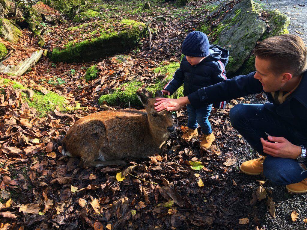 Happy Mum Blog - Auf Tierschau imTierpark Goldau - Vater und Sohn